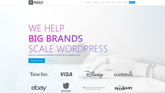 Managed WordPress Hosting Service - Pagely